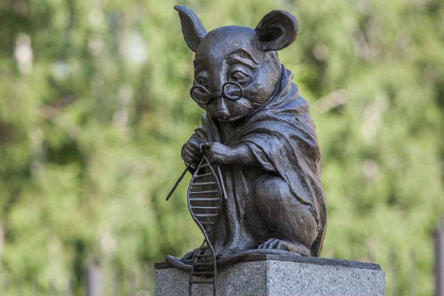 Памятник лабораторной мыши Новосибирск